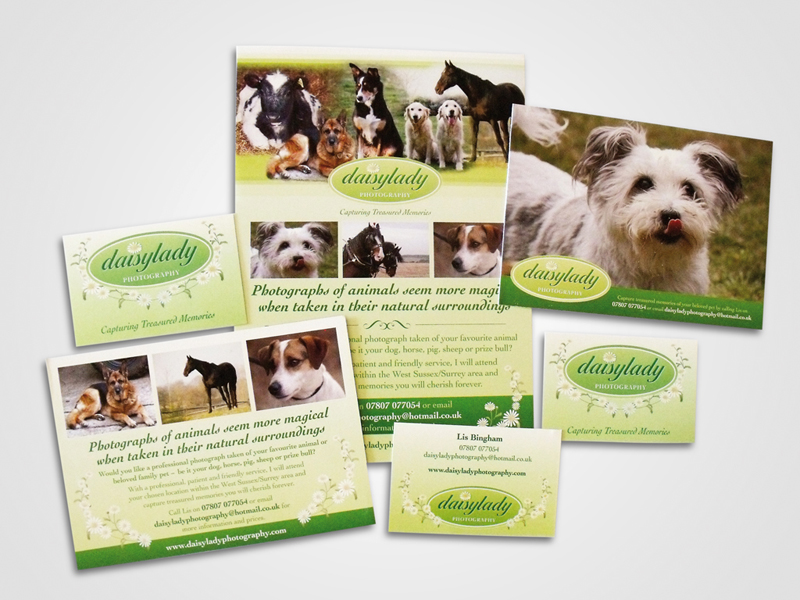 Daisylady Photography Direct Mail Design and Marketing