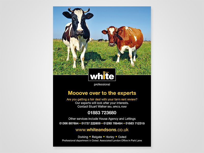 White and Sons 'Move Over' Advert Design and Print Advertising